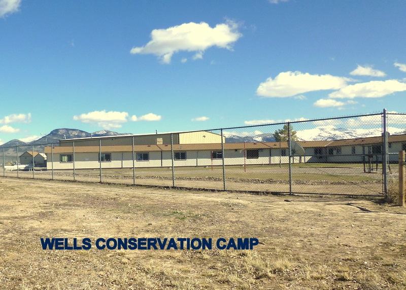 WELLS CONSERVATION CAMP