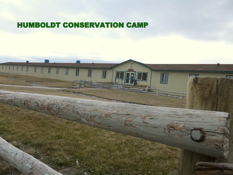 HUMBOLDT CONSERVATION CAMP