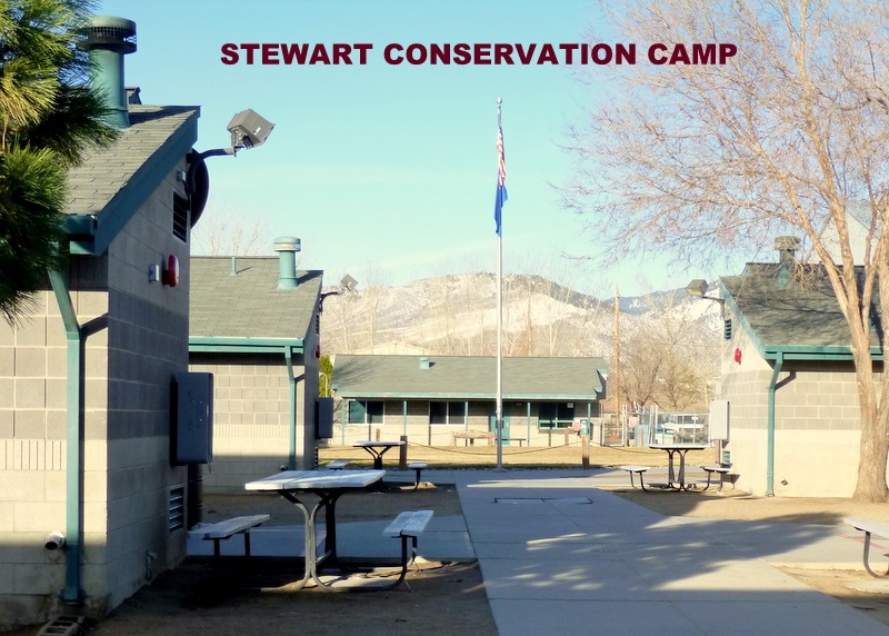 STEWART CONSERVATION CAMP